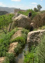 Iraq al-Amir. Dérivation pour une canalisation d'origine probablement hellénistique (photo L. Borel)