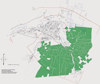 Plan de Palmyre (M. Balty & P. Clauss-Balty)