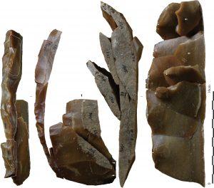 magdalenien-descartes